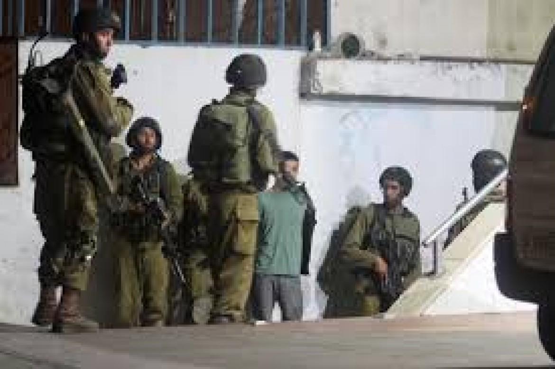الاحتلال يعتقل 11 مواطنًا بالضفة