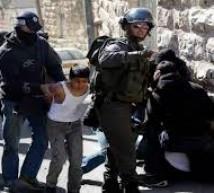 الاحتلال يعتقل 4 مقدسيين من الطور وسلوان