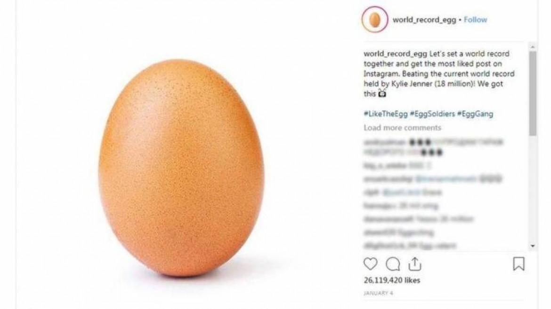 البيضة