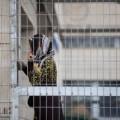 أسيرة فلسطينية