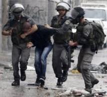 الاحتلال يعتقل 4 مقدسيين من العيسوية