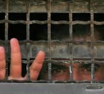 الأسير محمود سعادة يواصل إضرابه عن الطعام