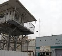 سجن هداريم