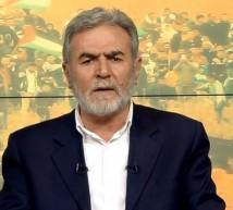 الأمين العام للحركة الجهاد الاسلامي القائد زياد النخالة