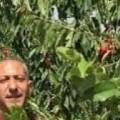 الاسير نبيل العربيد