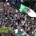 حشد للجزائريين
