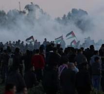 فلسطينين