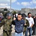 الاحتلال يعتقل 8 مقدسيين بسلوان والطور