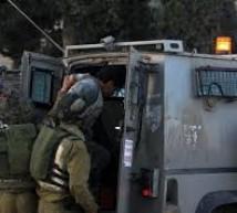 اعتقال 4 مواطنين في جنين وقلقيلية
