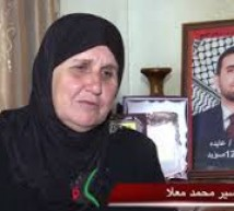 والدة الاسير محمد معلا