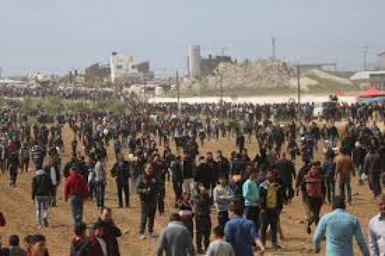 15 شهيدا وأكثر من 1500 إصابة
